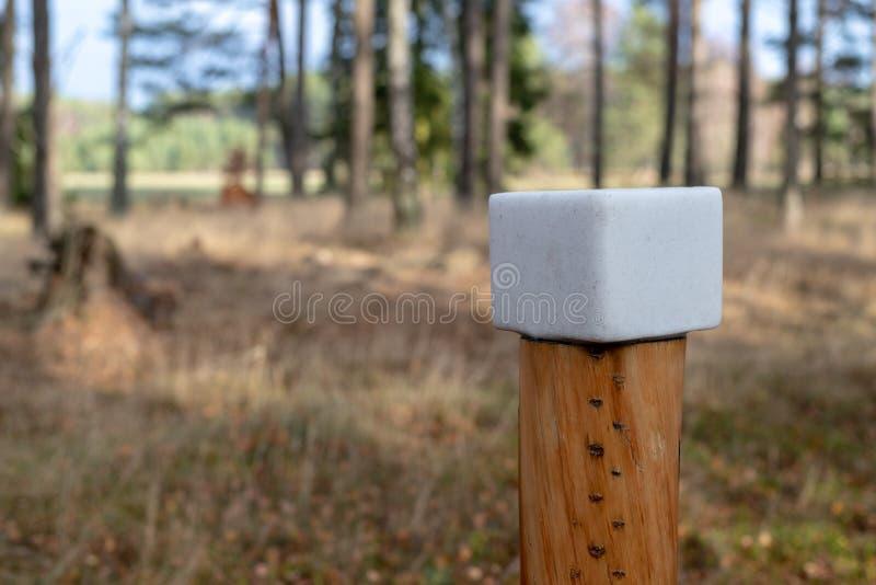 Un cube en sel préparé pour des animaux de forêt Léchez dans la forêt près photos libres de droits