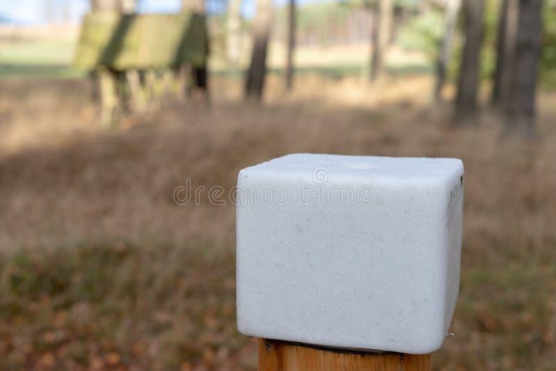 Un cube en sel préparé pour des animaux de forêt Léchez dans la forêt près photos stock