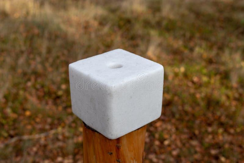 Un cube en sel préparé pour des animaux de forêt Léchez dans la forêt près images stock
