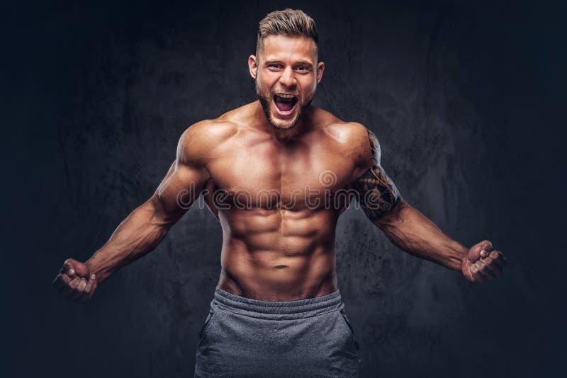 Un culturista tatuato senza camicia bello con taglio di capelli alla moda e la barba, durando mette in mostra gli shorts, posanti fotografia stock