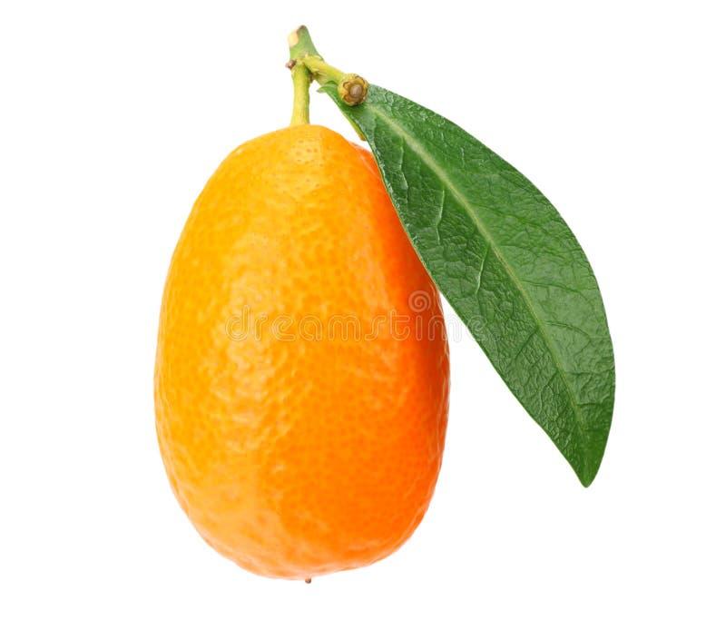 un cumquat ou kumquat avec la feuille d'isolement sur le fond blanc photo stock