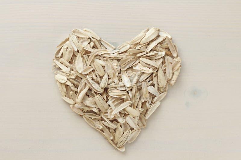 Un cuore fatto dal lotto dei semi di girasole Mucchio di spreco dai semi su un fondo bianco Semi di girasole bianchi Creativo, co fotografia stock libera da diritti