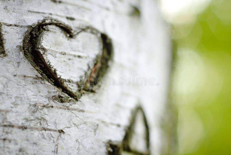 Un cuore intagliato di amore immagine stock