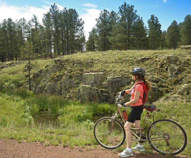 Un cycliste de femme fait une pause sur Forest Trail image stock