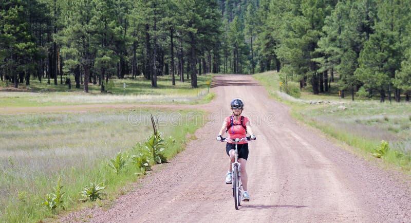 Un cycliste de femme monte Forest Road photo stock