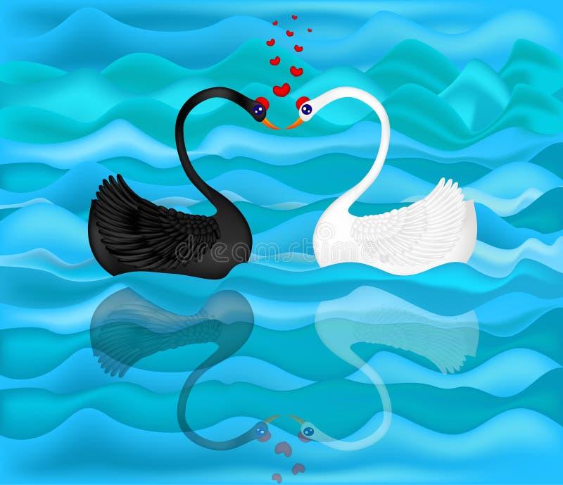 Un cygne noir et blanc illustration stock