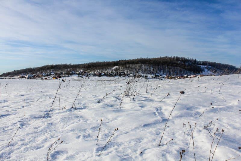 Un día de invierno en la región de Leningrad imagen de archivo