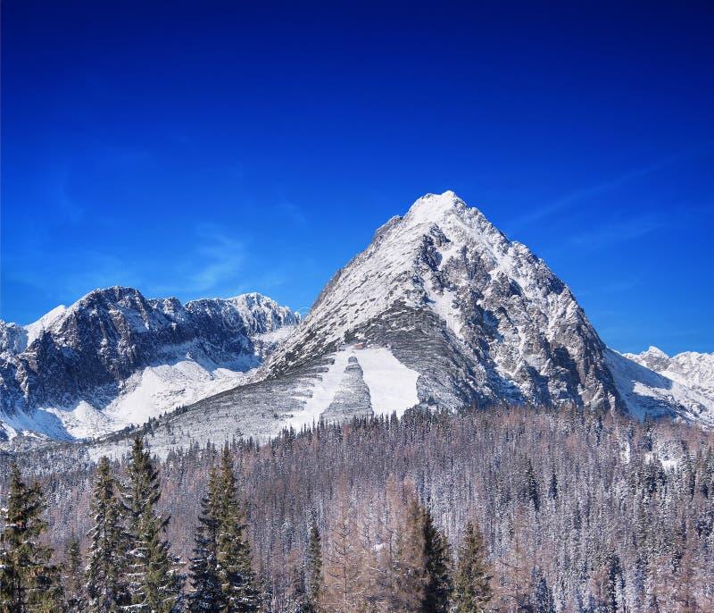Un día de invierno soleado en alto Tatras, Eslovaquia foto de archivo libre de regalías