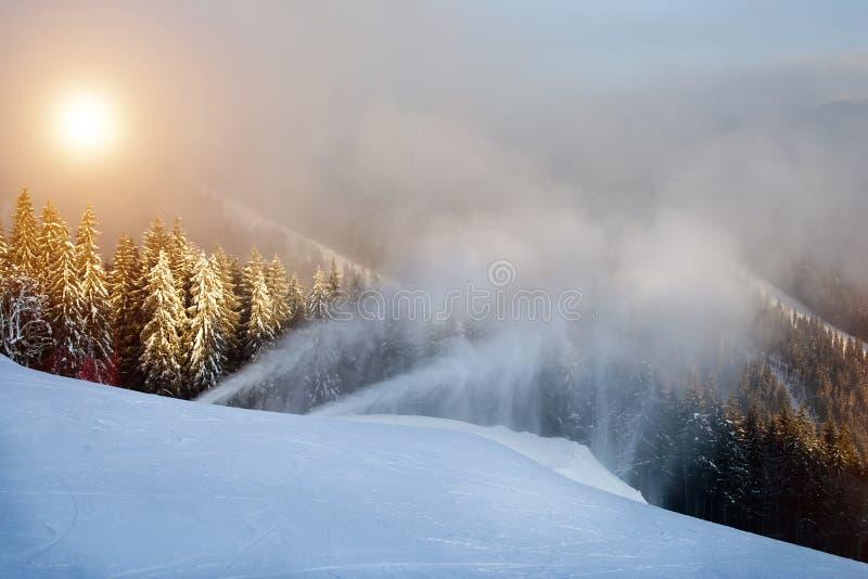 Un día de invierno soleado en Bukovel Ucrania Cárpatos fotos de archivo libres de regalías