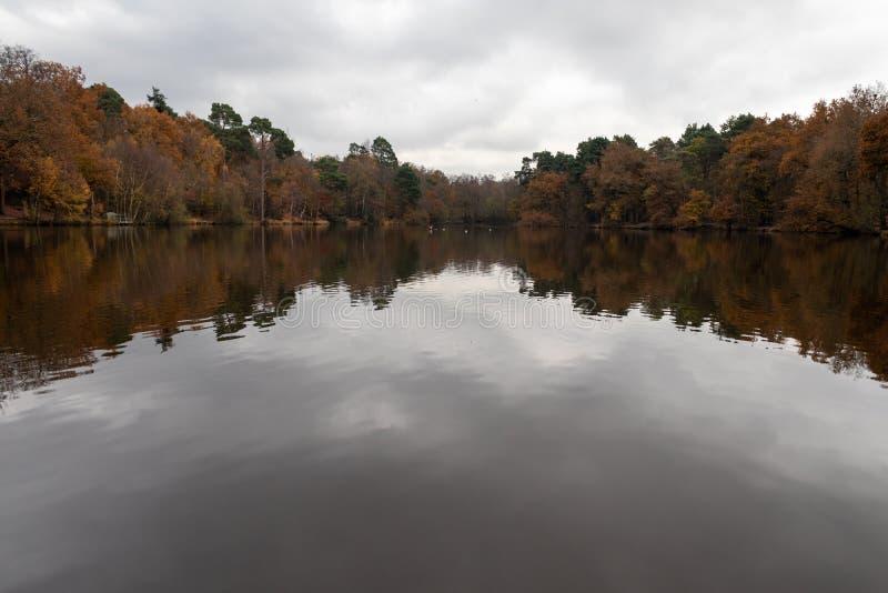 Un día de otoño en Buchan Park Crawley Reino Unido fotografía de archivo libre de regalías