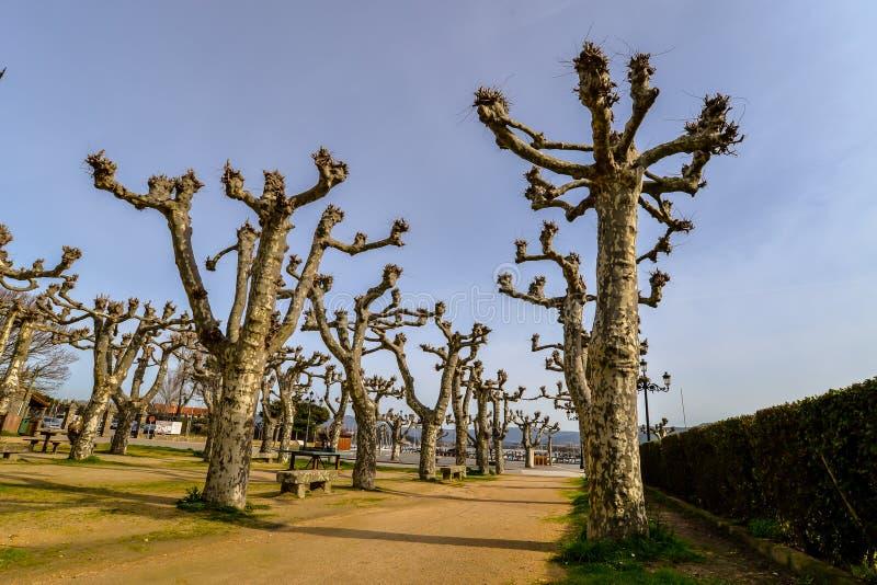 Un día de primavera temprano en Baiona - Galicia foto de archivo libre de regalías