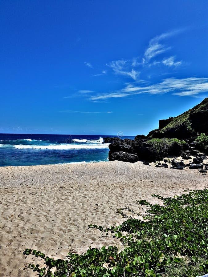 Un día en la playa nunca es tiempo perdida imagenes de archivo