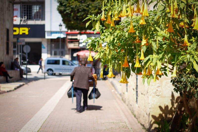 Un día ordinario y una gente local están en la calle foto de archivo