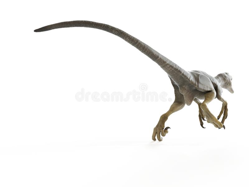 un dakotaraptor illustration de vecteur