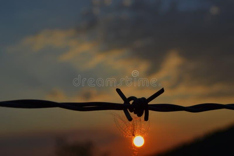 Un des moments du coucher du soleil images libres de droits