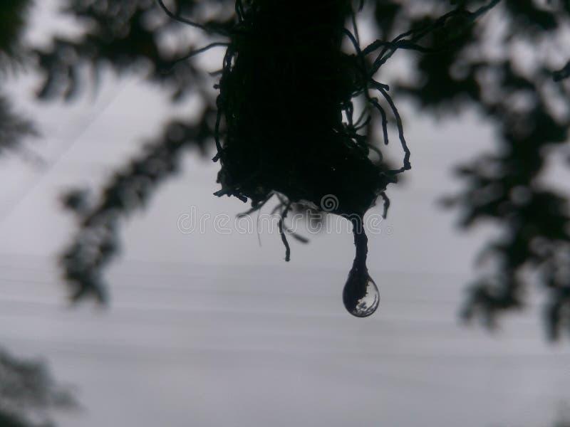 Un descenso del agua fotografía de archivo