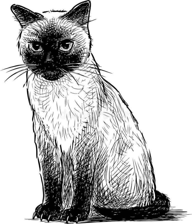 Un dibujo de la mano de un gatito siamés que se sienta ilustración del vector