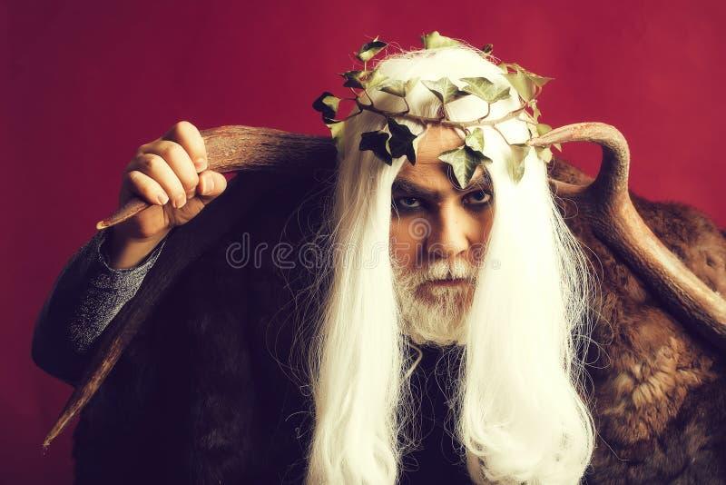 Un dieu de Zeus avec des andouillers photos libres de droits
