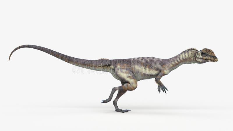 Un dilophosaurus ilustración del vector