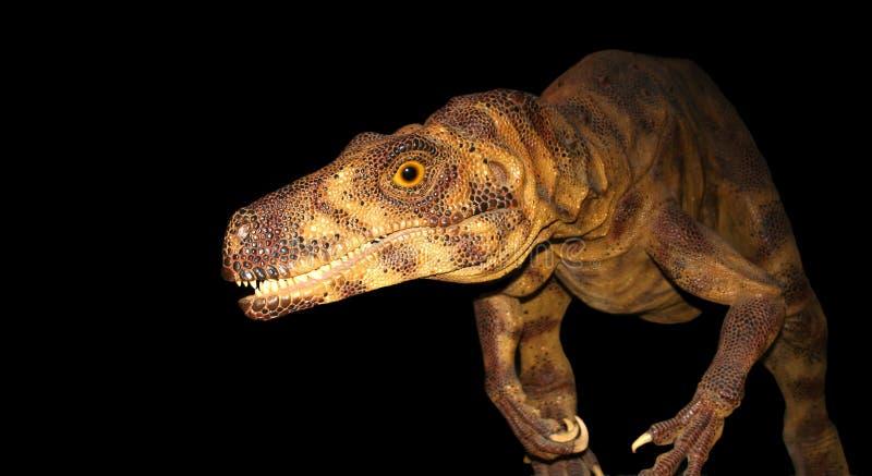 Un dinosaurio en el vagabundeo fotos de archivo libres de regalías