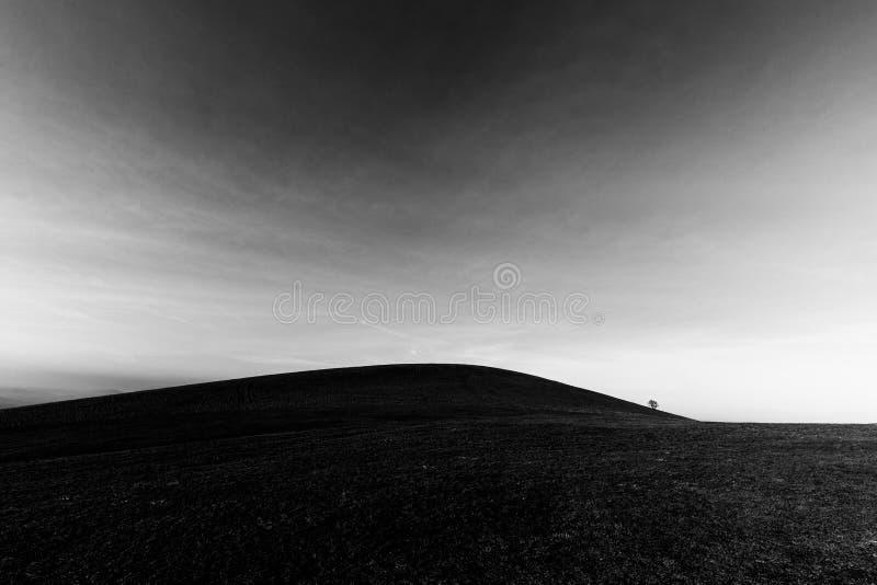 Un distante, árbol del loney en una colina desnuda, debajo de un cielo profundo con las nubes blancas foto de archivo