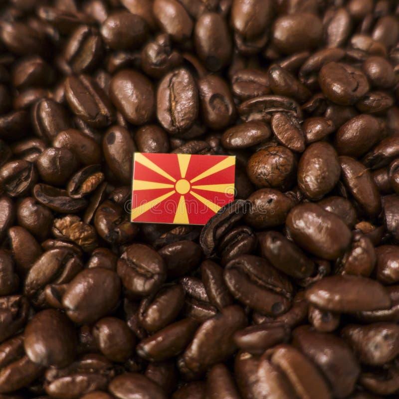 Un drapeau de la Macédoine placé au-dessus des grains de café rôtis photo libre de droits