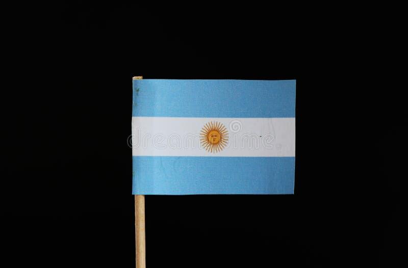 Un drapeau national bleu et blanc de l'Argentine sur le cure-dents sur le fond noir Un triband horizontal de bleu-clair et de bla images libres de droits