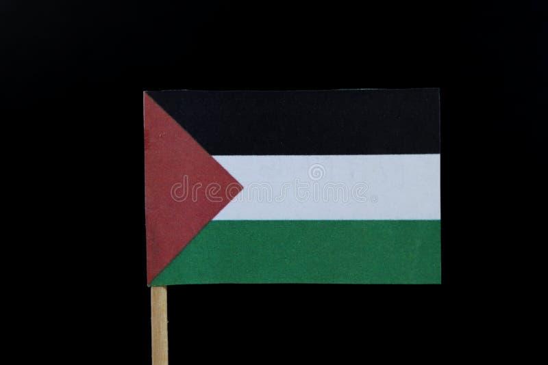 Un drapeau palestinien intéressant et officiel sur le cure-dents sur le fond noir Un tricolore horizontal de noir, de blanc, et d photo stock