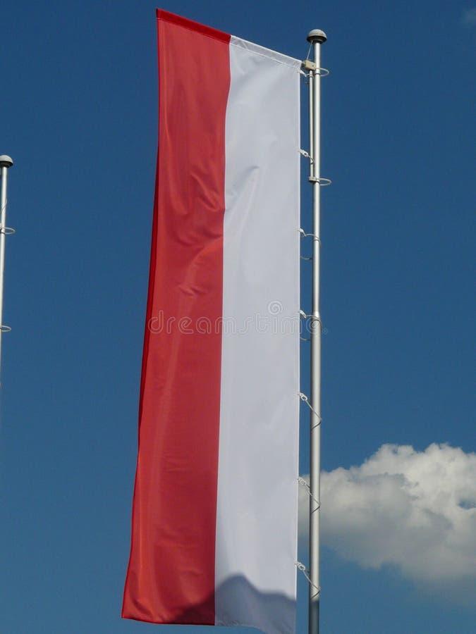 Un drapeau polonais dans le vent images libres de droits