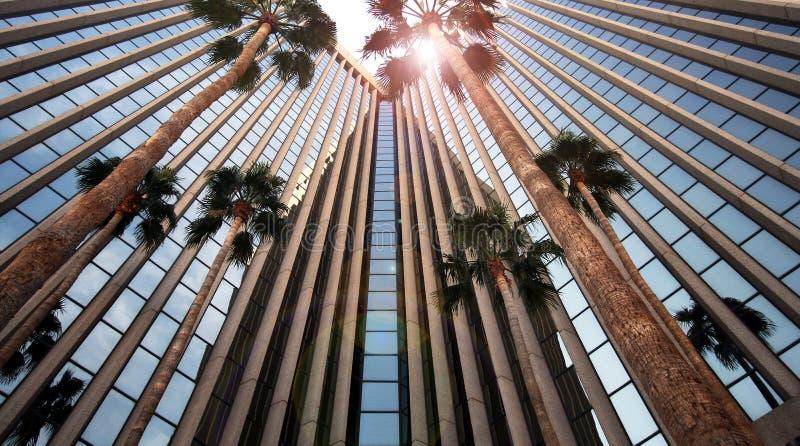 Un edificio de oficinas se refleja y las palmas foto de archivo