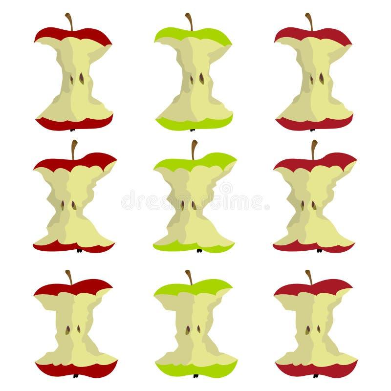 Un ejemplo hermoso de la base de la manzana ilustración del vector