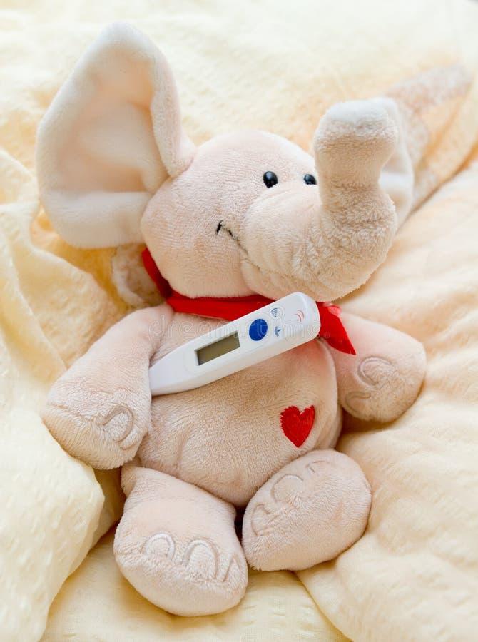 Un elefante ammalato immagine stock