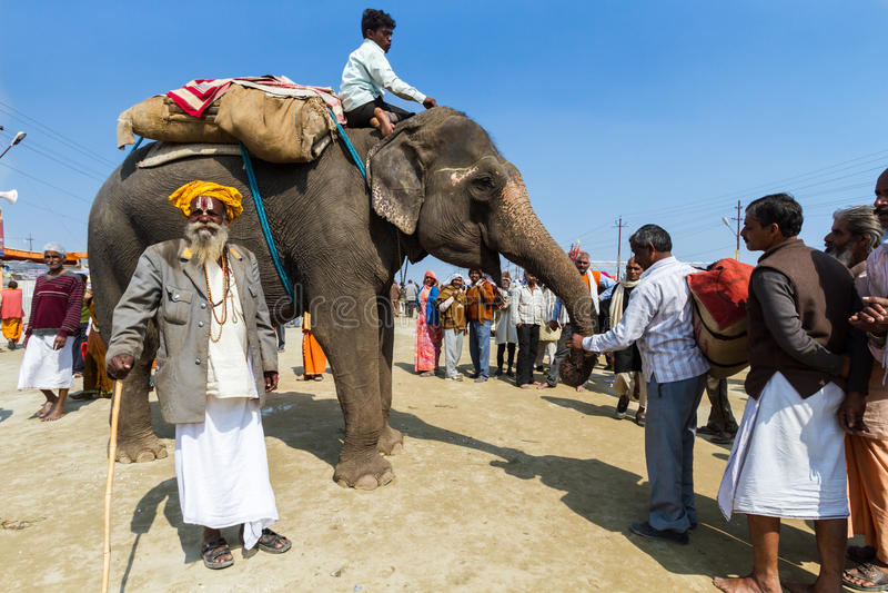 Download Un Elefante En El Kumbha Mela, La India Fotografía editorial - Imagen de allahabad, mela: 42433687