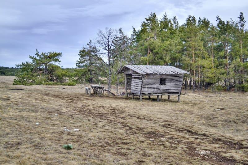 Un endroit au repos dans les bois en nature images stock