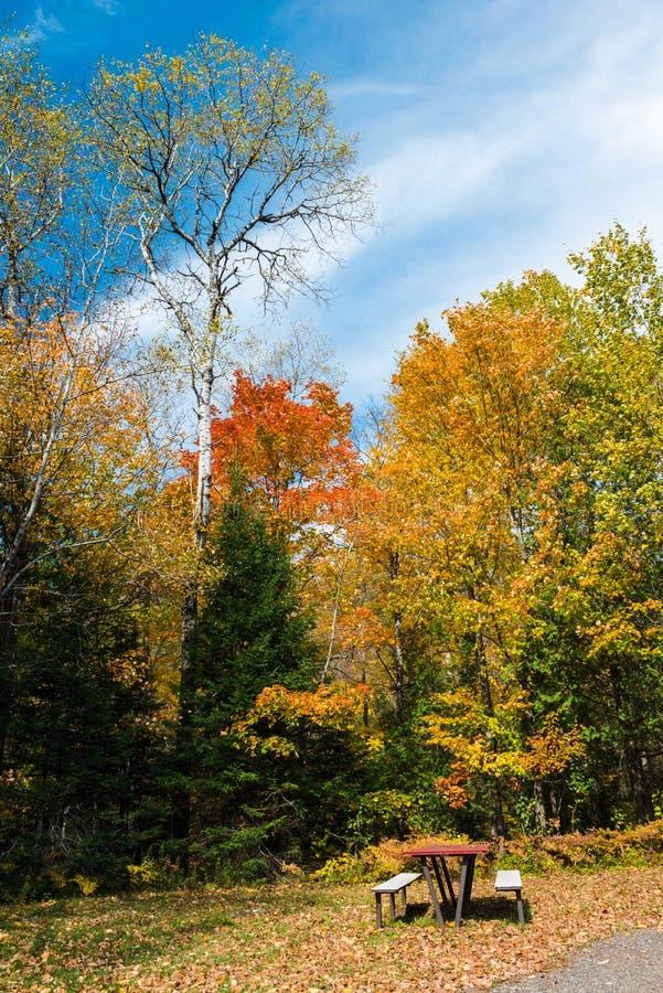 Un endroit idéal pour le repos, entouré par les arbres colorés de chute photos stock