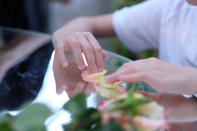 Un enfant jouant avec des pétales de rose photographie stock libre de droits