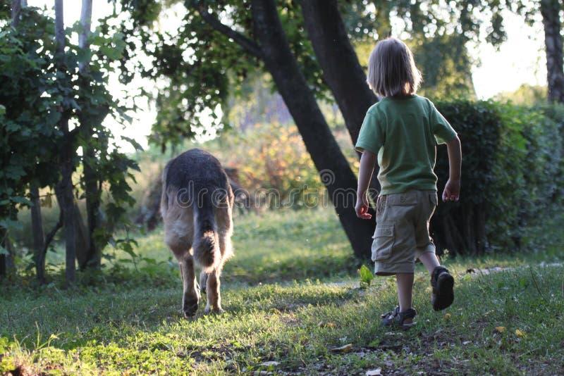 Un enfant sur une promenade avec un chien photo libre de droits