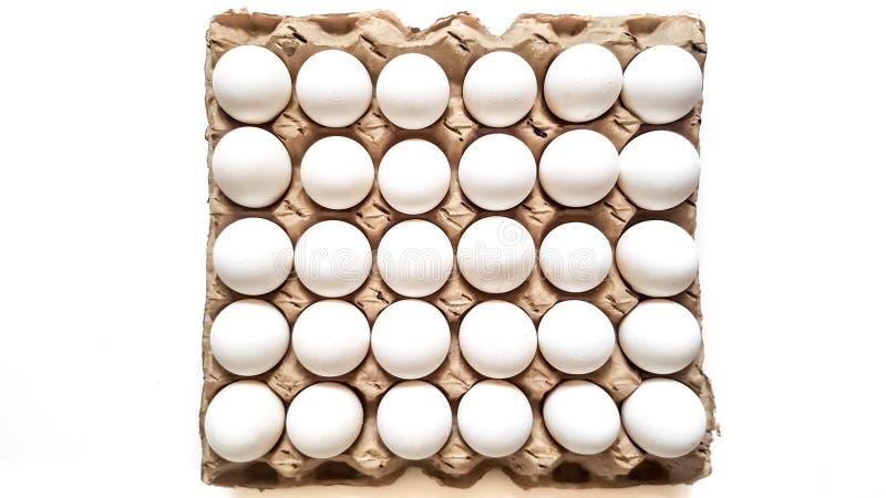 Un enrejado de los huevos de treinta pedazos fotos de archivo