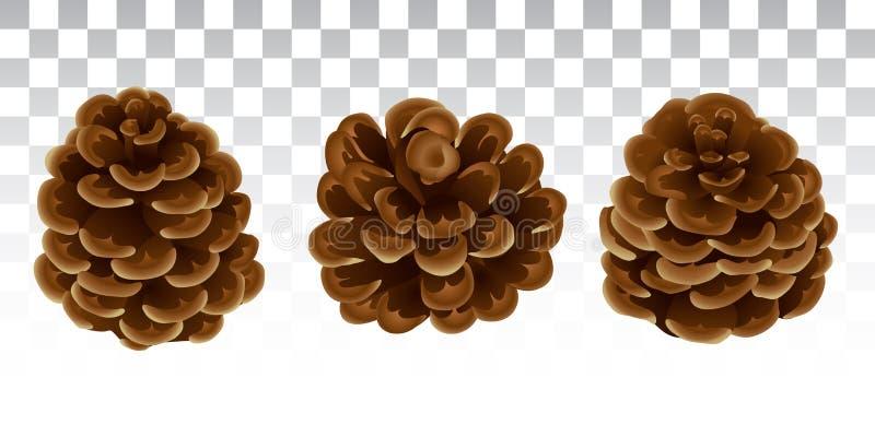 Un ensemble de cônes dans un style réaliste Décor naturel de Noël Pi illustration de vecteur