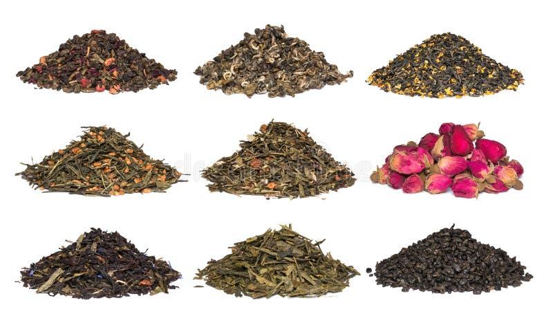 Un ensemble de thé de fines herbes et floral sec Vert, noir, thés de composition sur le blanc images libres de droits