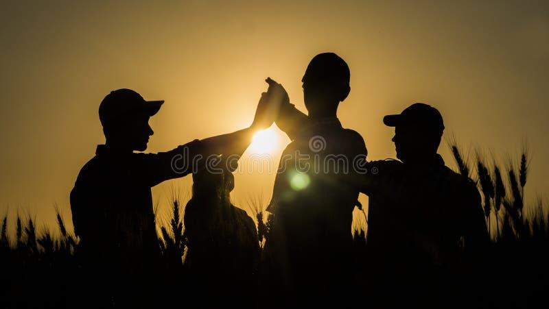 Un equipo de gente joven enérgica hace la alta marca cinco en un campo de trigo pintoresco en la puesta del sol imagenes de archivo