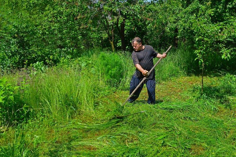 Un'erba di falciatura dell'uomo fotografia stock libera da diritti