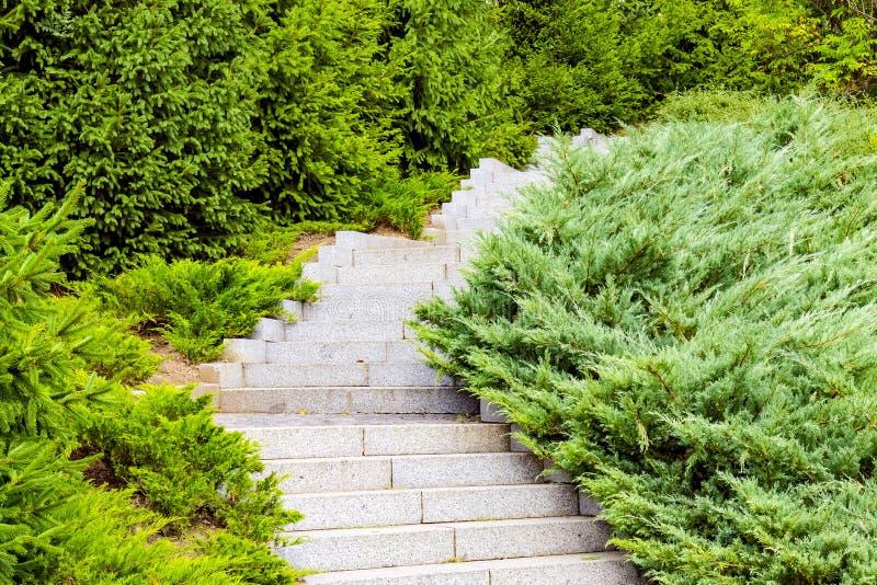 Un escalier en pierre gris entouré par les églises et les buissons verts image stock