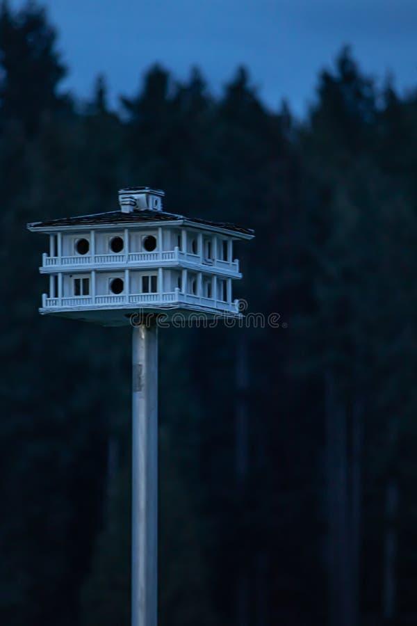 Un esperto ha elaborato l'aviario con avvolge la piattaforma ed il tetto su un palo del metallo fotografie stock libere da diritti