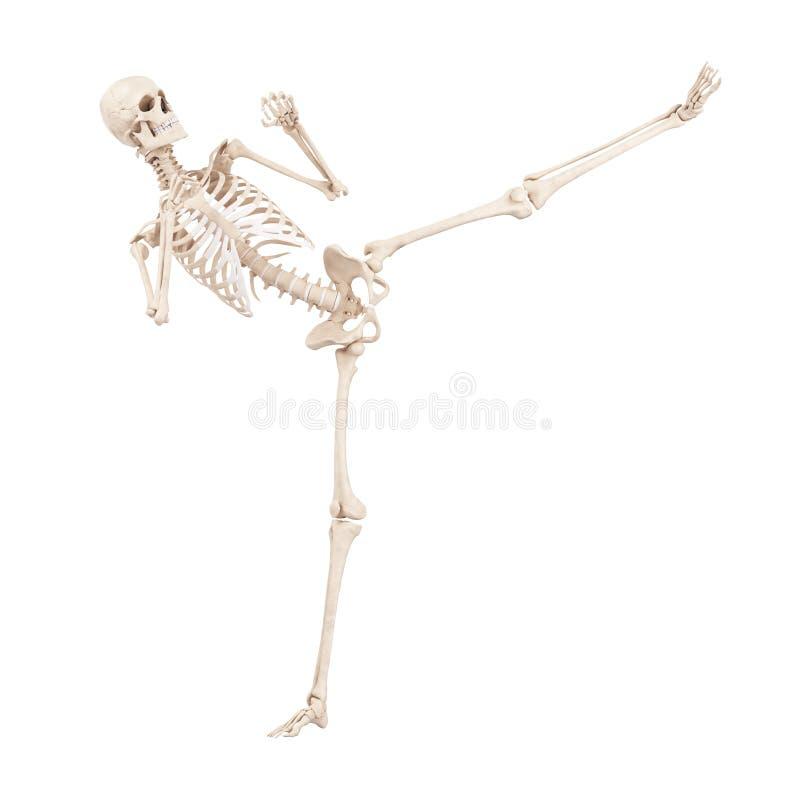 Un esqueleto de retroceso con el pie stock de ilustración