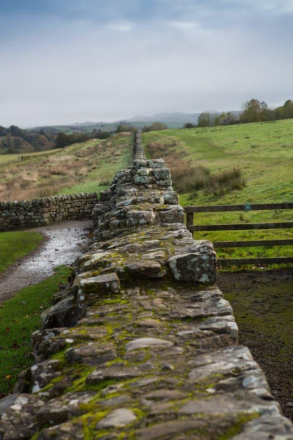 Un estiramiento de Roman Wall en Northumberland imagenes de archivo