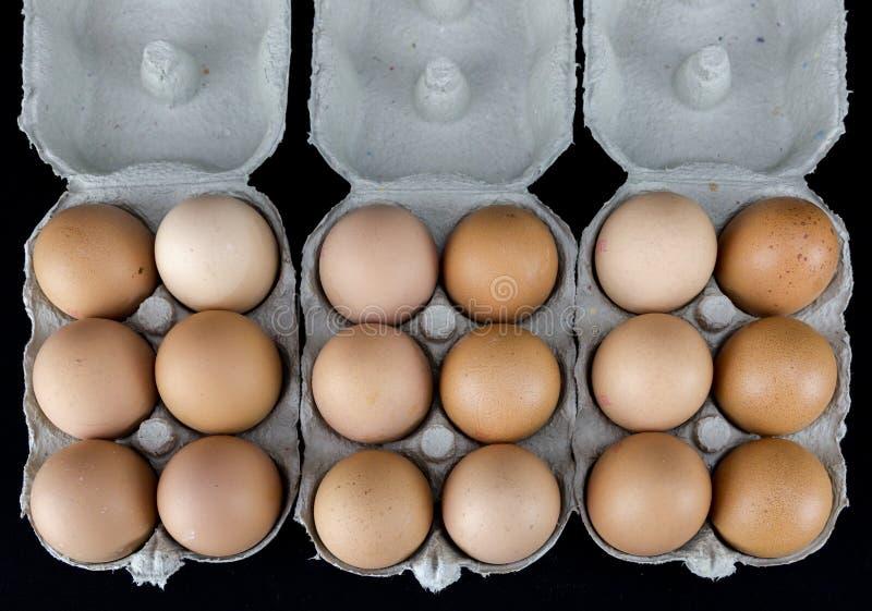 Un et demi-douzaines d'oeufs brun clair dans des boîtes en carton photo libre de droits