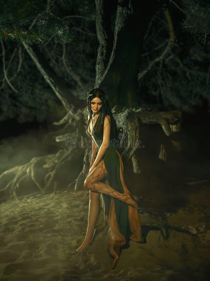 Un fabuloso; ninfa Gyana del bosque imágenes de archivo libres de regalías