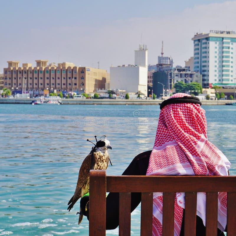 Un falconeer avec son faucon à Dubaï images stock