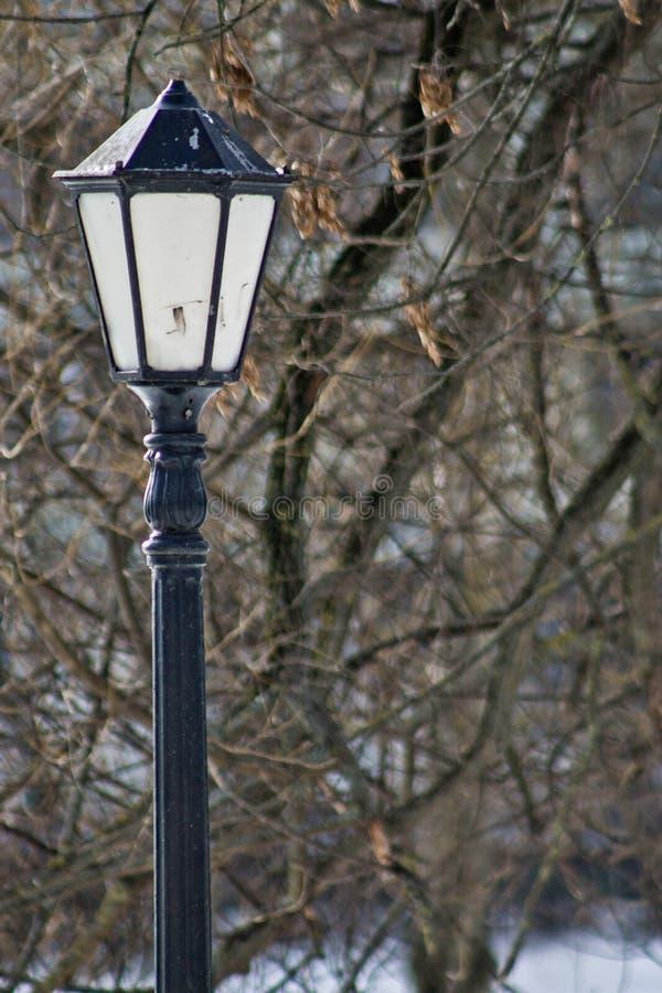 Un farol en el parque imagen de archivo